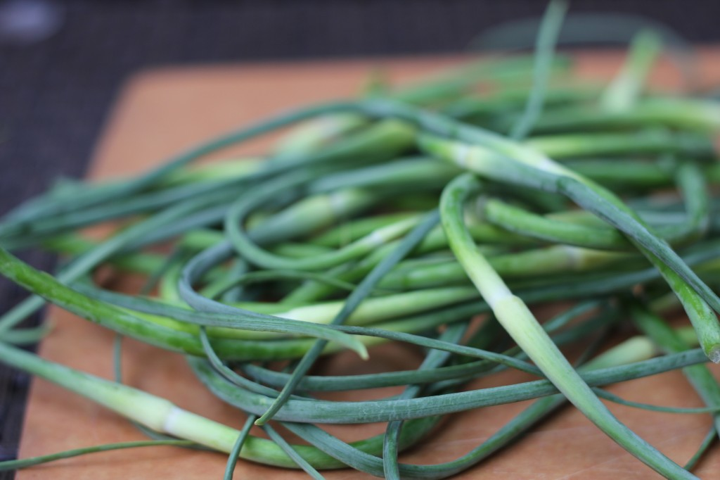 to market: garlic scapes