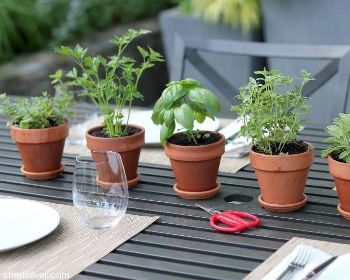 herb centerpiece