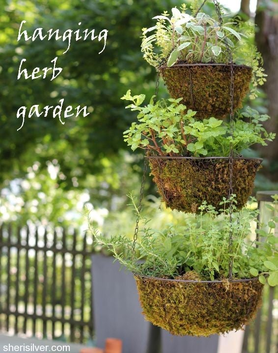 Hanging Herb Garden Sheri Silver Living A Well Tended