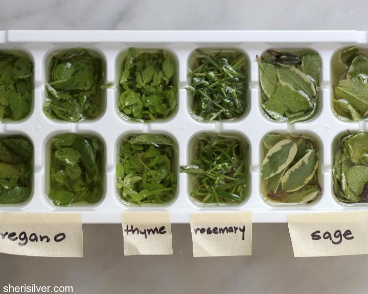 freezing herbs in oil