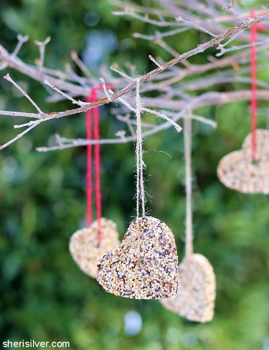 bird seed hearts