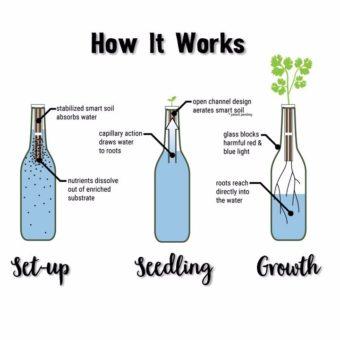 garden in a bottle l sherisilver.com