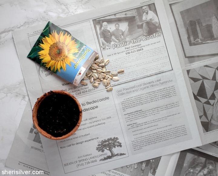 Plantable Paper Pots