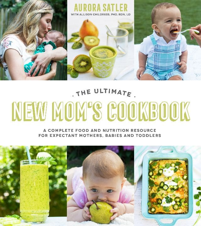 Ultimate New Mom's Cookbook l sherisilver.com
