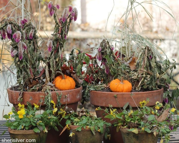 end of fall planters