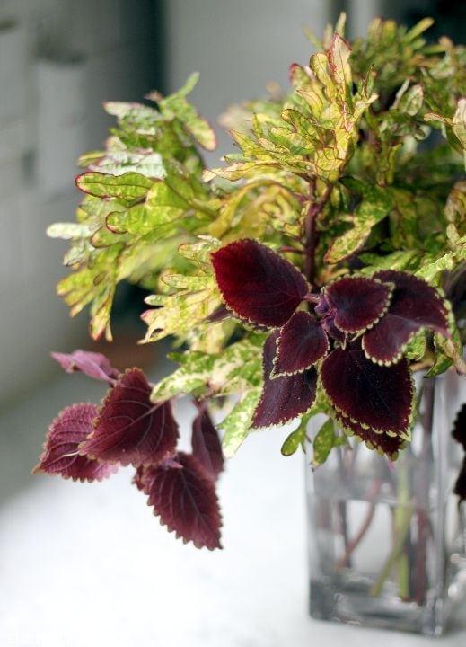 chic flower arrangments