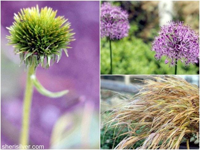 Preparing-Garden-For-Winter