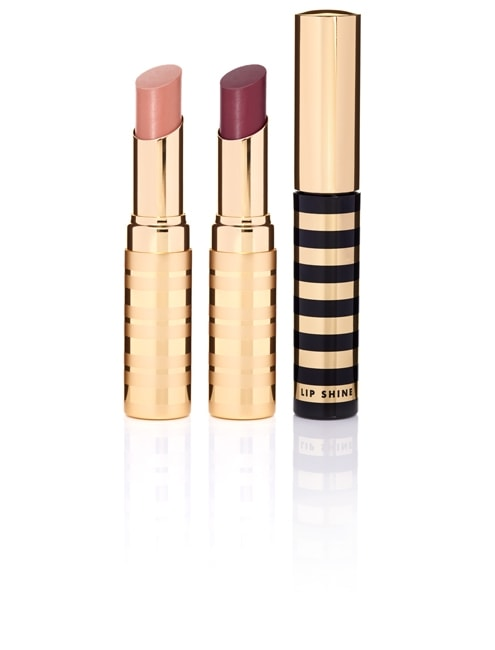 beautycounter-lip-quintessential-set-495x650_view1_1