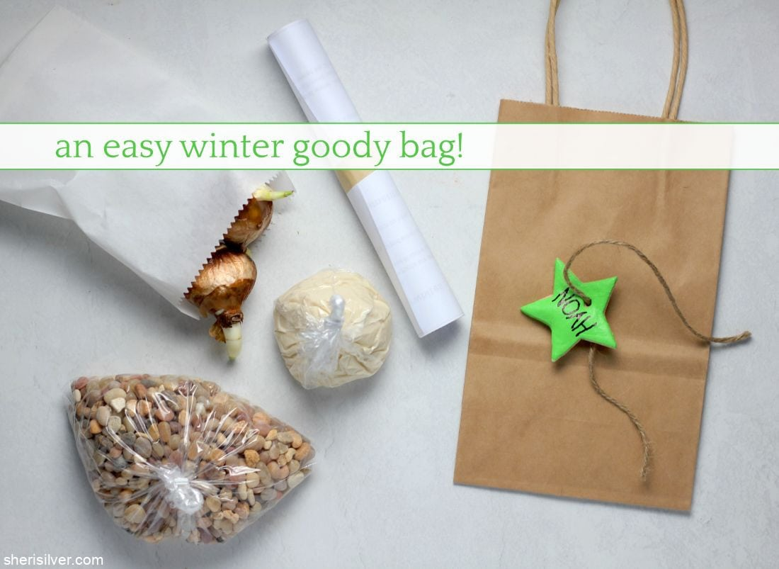 Easy Winter Goody Bags l sherisilver.com