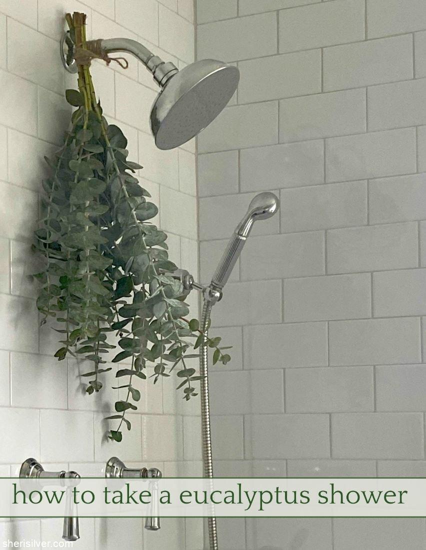 How To Take A Eucalyptus Shower l sherisilver.com