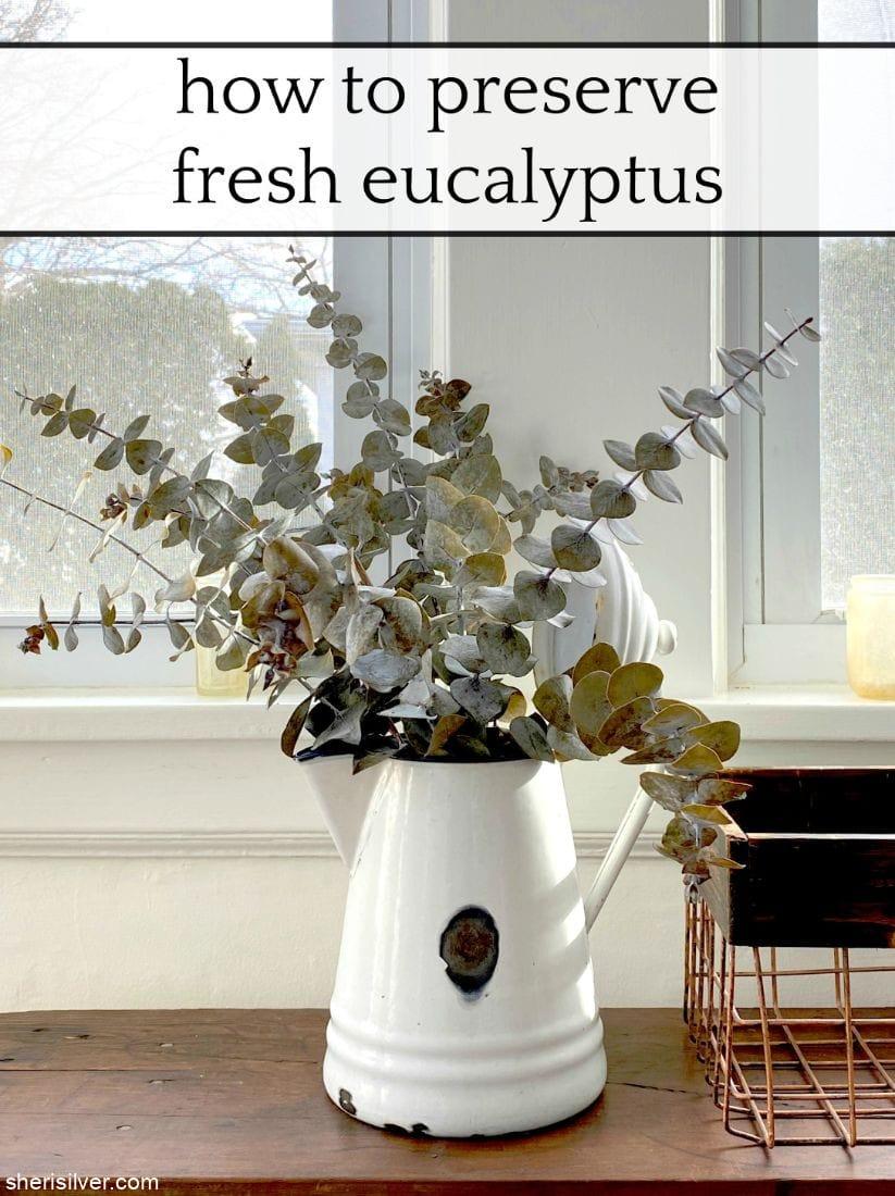 How to Preserve Fresh Eucalyptus l sherisilver.com