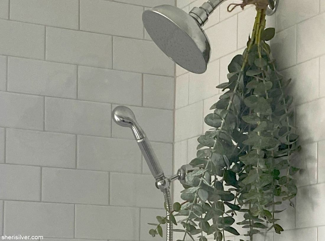 How To Take A Eucalyptus Shower l sherisilver.com