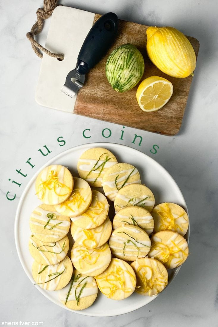 Citrus Coins l sherisilver.com
