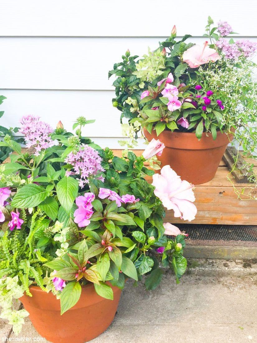 the garden room pelham l sherisilver.com