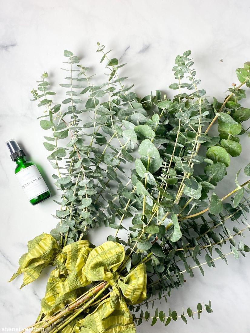 Gift of Eucalyptus l sherisilver.com